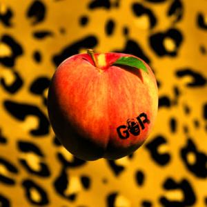 Gorilla Riot
